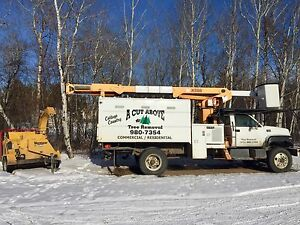 Tree Removal Business