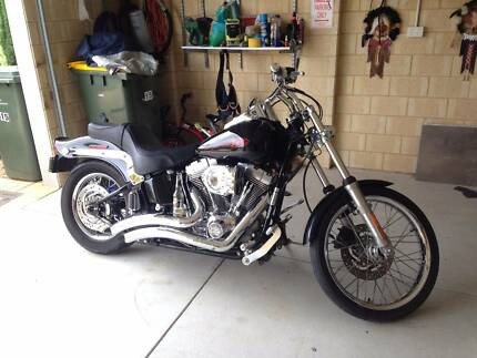 immaculate 2006 softail Harley Davidson