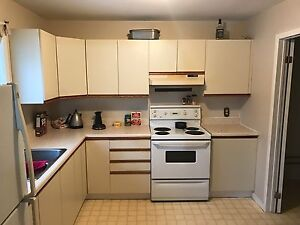 Renovated 2 bedroom - downtown $850