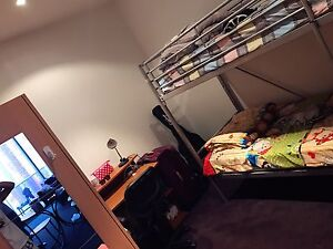Room for rent at city center Adelaide CBD Adelaide City Preview