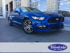 2017 Ford Mustang GT 5.0L, LEATHER SEATS, REVERSE CAMERA SYST...