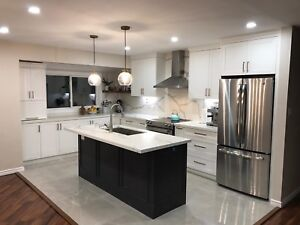 Kitchen Renovation We Will Work With Your Budget