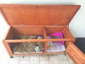 Guinea pigs and hutch for sale Gwelup Stirling Area Preview