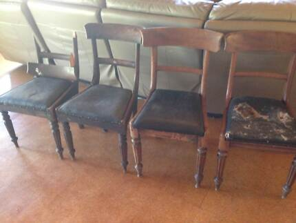 Antique Chairs - Antique Dining Chairs X 6 Antiques Gumtree Australia Perth City