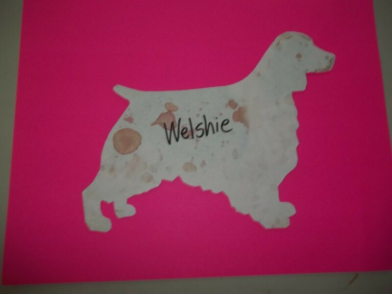 Welsh Springer Spaniel Car Magnet Hand Cut and Painted U pick style color