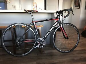 Carbon Cannondale Synapse 4 51 cm Bike