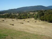 Party Hay for Hire Woori Yallock Yarra Ranges Preview