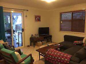 Coorparoo-Large Townhouse w/ all the Mod Cons and Large courtyard Coorparoo Brisbane South East Preview
