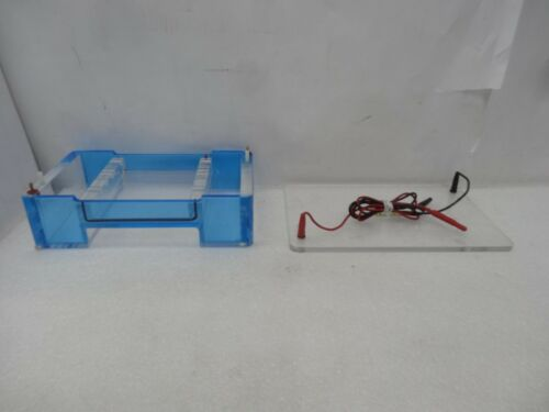 Fisher Scientific FB-SB-1316 Midi-Horizontal Electrophoresis Cell With Tray