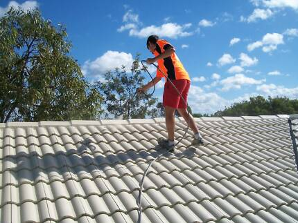 Roof Cleaning and Painting Franchise For Sale