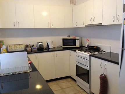 TWO rooms available for female uni students(Negotiable) Hillsdale Botany Bay Area Preview