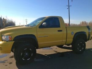 05 Dodge Rumble Bee