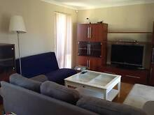 Single room available until end of August. $150→$130 Bentley Canning Area Preview