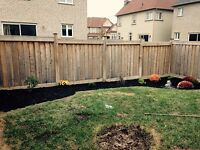 Yard Clean up /Sod removal/install/Grass Cutting
