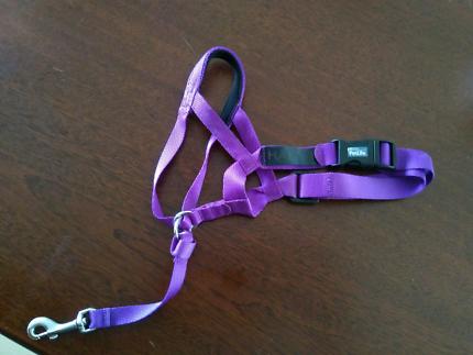 Petlife halti head collar sz 2 purple.