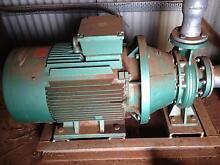 "125x80-250 pump and motor + 32mm(1 1/4"") coil tynes Latrobe Latrobe Area Preview"