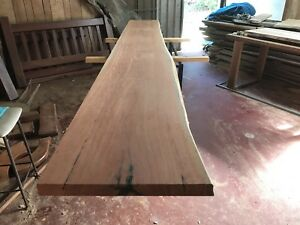 Bluegum Timber Slabs