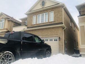 Rent House  , Hamilton (Ancaster)