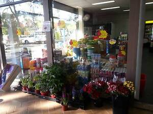 BUSINESS FOR SALE, fruit,vege,grocery shop with lots of potential Raby Campbelltown Area Preview