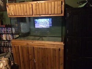 90 gallon with stand and canopy  Cambridge Kitchener Area image 2
