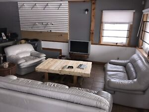 Grey/White Leather Couch Set