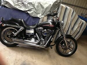 2007 Dyna Low Rider Moana Morphett Vale Area Preview