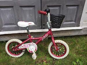"12"" wheel bicycle"