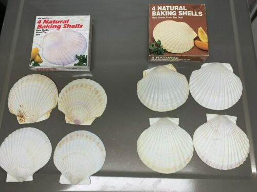 8 total  Natural Baking Shells for Cooking Fox Run in Box Japan