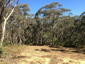 TINY HOUSE LAND AVAILABLE to RENT - Leura