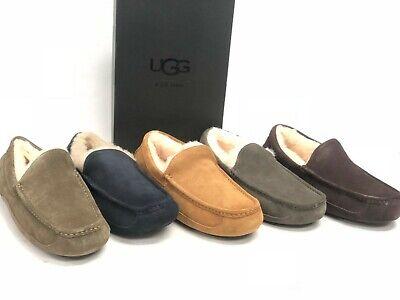 UGG Australia Men's Ascot Slippers 1101110 Shoes Sheepskin Suede Multiple Colors