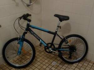 Ladies 20 inch mountain bike