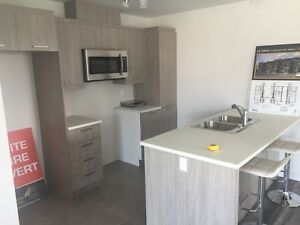 4.5 Condo for Rent (NEWLY BUILT)