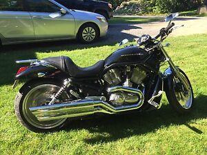 VRSC noir 2004 Harley Davidson