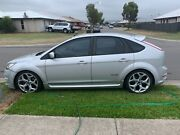 Ford Focus Xr5 Turbo Thornton Maitland Area Preview