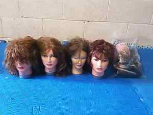 100% chinese human hair mannequin heads SELLING CHEAP! Reedy Creek Gold Coast South Preview