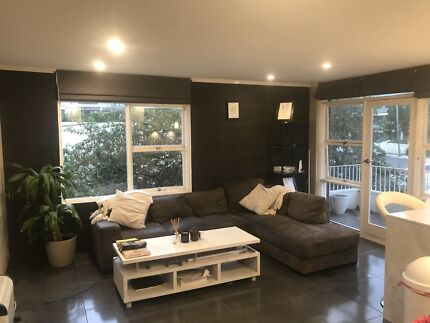 Room For Rent In Dee Why
