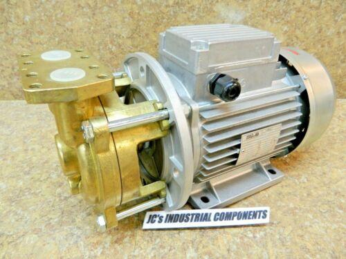 Speck Pumpen  regenerative turbine pump   Y-6091.0011   brass pump