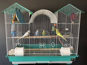 4 parakeet birds and cage