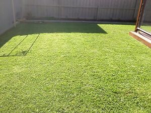 GIVE YOUR LAWN A SPRING HAIRCUT! YOU RELAX; I'LL MOW! Oakhurst Blacktown Area Preview