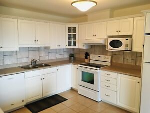 2 bedroom furnished condo