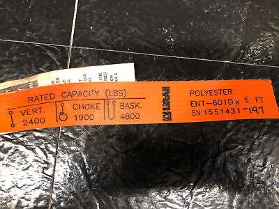 Liftall En1-601d X 5 Polyester Sling Strap