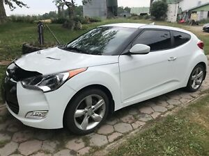 Hyundia veloster for sale