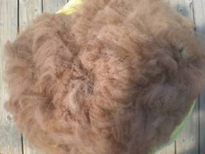 Alpaca Fleece - Wool - Quality For Craft, Spinning - Newly Shorn Glen Forrest Mundaring Area Preview