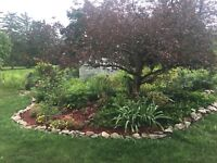 Landscaping/ Property Maintenance Services