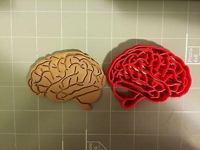 Brain Anatomy Cookie Cutter