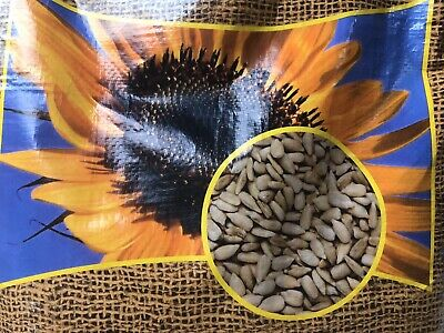 Sunflower Hearts Wild Bird Food PREMIUM Bakery Grade Dehulled Kernels Seeds 400g