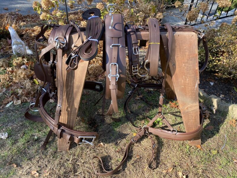 Leaders Worldwide Tech Competition Harness ~ Full/Horse Size ~ Brown