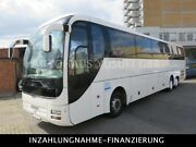 MAN R 08 Lions Coach Supreme