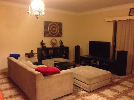 Huge, peaceful house with friendly housemates. Netley West Torrens Area Preview