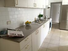 1 bedroom unit - spacious and private Vaucluse Eastern Suburbs Preview